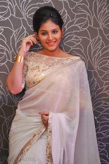 Anjali latest Glamorous pics in saree 023