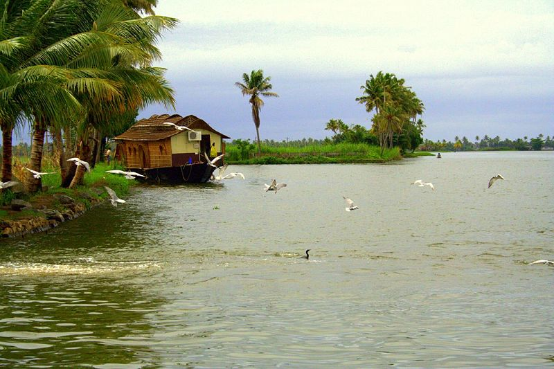 True Colors Of India Kerala Tourism Places To Visit In Kerala