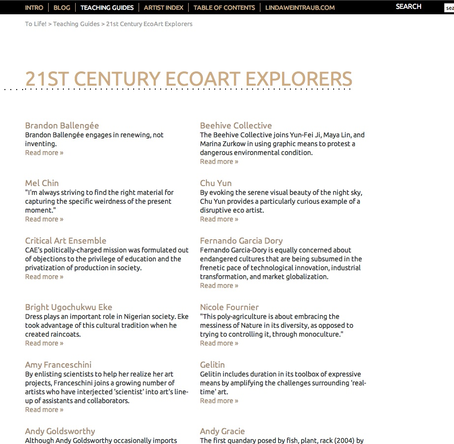 21sr Century Ecoart Explorers