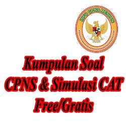 Contoh Soal CAT CPNS 2018