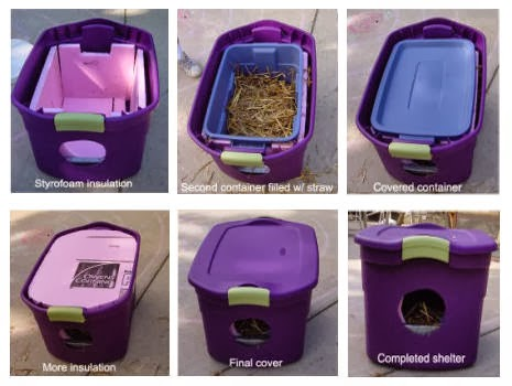 Diy At At Cat House moreover Watch furthermore 474777985688571100 moreover Another Awesome Outdoor Cat Enclosure as well Diy Outdoor Cat Enclosure Pvc TL3lvILM2X2ssLFe6BLNO4h8id6wBPhP6gPPnI6lL2c. on homemade cat houses for outside