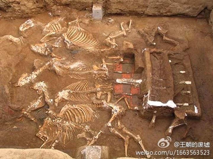 tomb qin shi huangs grandmother has been discovered xi - Encuentran la tumba de la abuela del Primer Emperador de China
