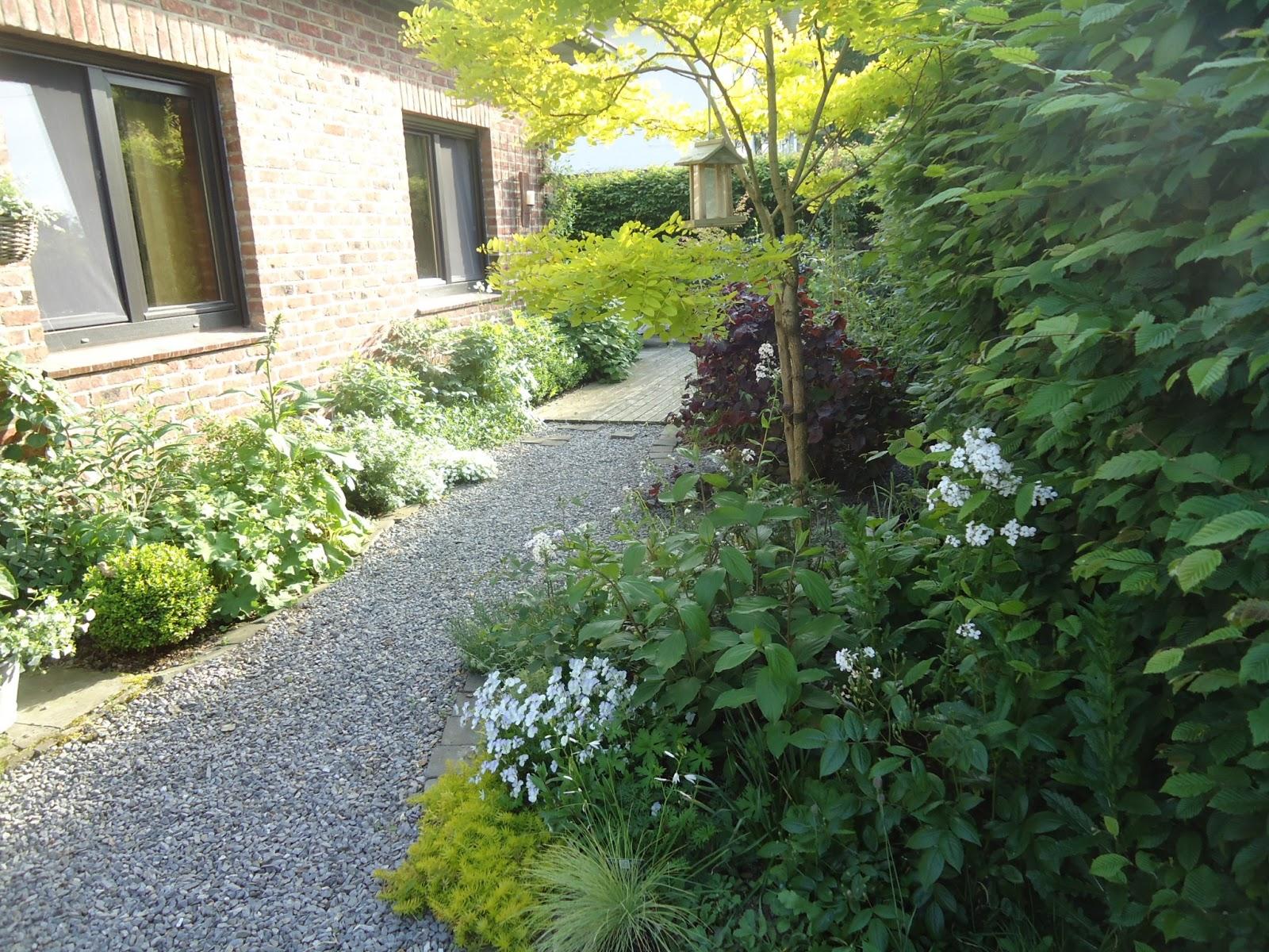 Je suis au jardin du blanc du bois de l 39 eau for Jardin en gravier blanc