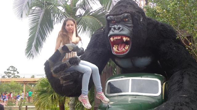 Beto Carrero World, beto carrero, passaporte aniversariante, Free Fall, King Kong, brinquedo free fall, Penha, Santa Catarina, parque de diversão, dicas beto carrero, aeroporto navegantes, Navegantes