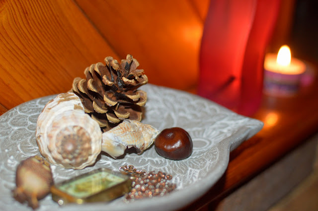 Autumn Pince Cone Shell Conker