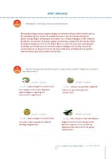 6.Sinif  Turkce Doku Yayinlari Ogrenci Calisma Kitabi Sayfa 11