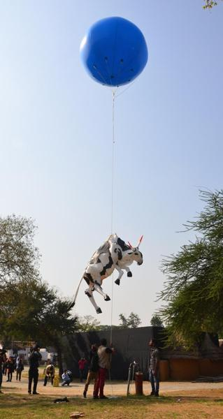 Jaipur police forced organizers of Third Jaipur Art Summit at Jawahar Kala Kendra to dismantle a plastic cow installation saying it hurt the sentiments of people.  The cow made of  styrofoam had been floated at a  height of 50 feet in air with the help of a hot air balloon.   Two artists, Anish Ahluwalia and Chitan Upadhyay, who protested police action, were also reportedly detained at Bajaj Nagar station. However, police said the artists had been only called to the station to explain that the art object was sending a wrong message.