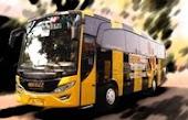 Bus Pariwisata Beebuz