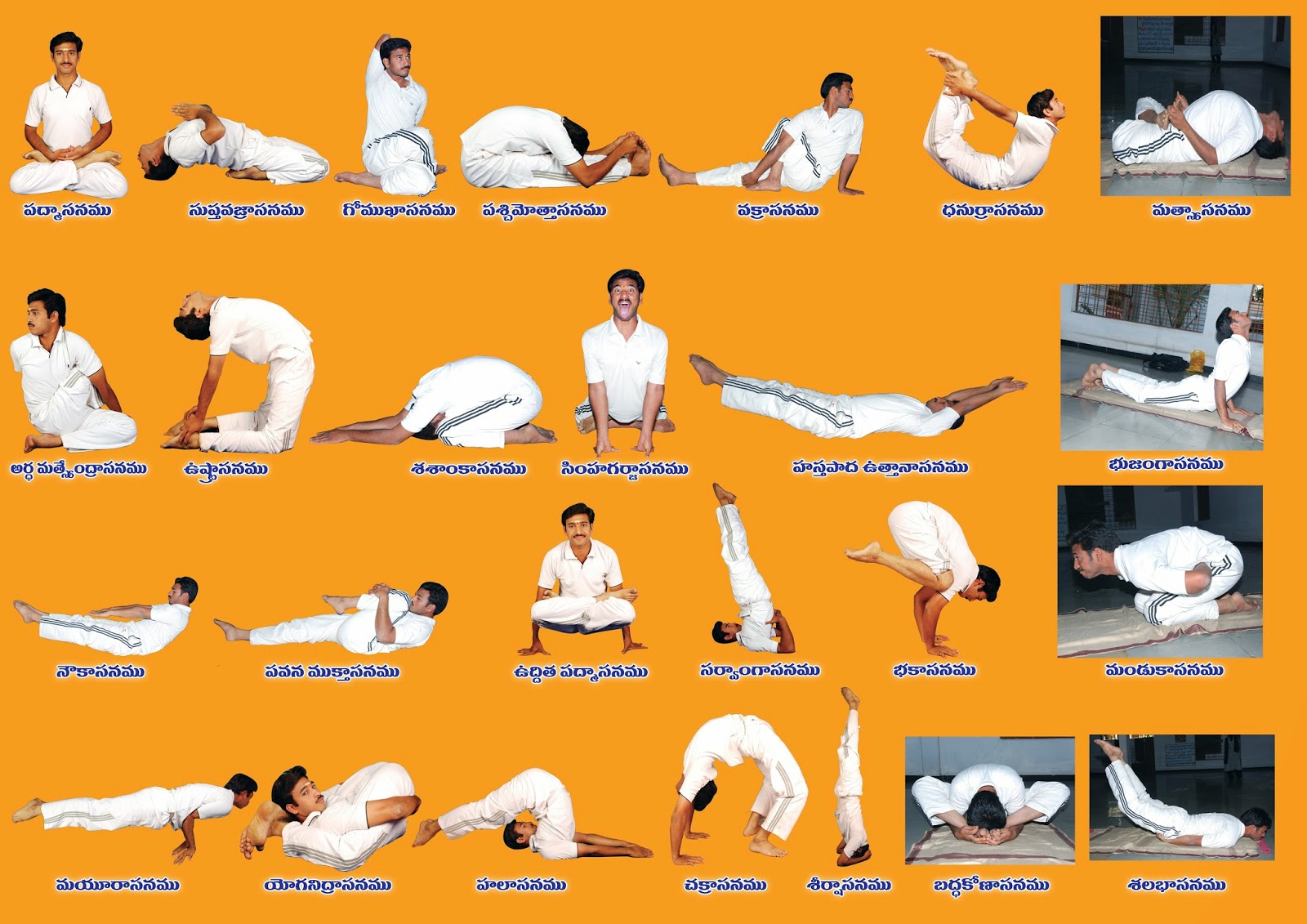 The Practice Of Yoga Makes Body Strong And Flexible It Also Improves Functioning Respiratory Circulatory Digestive Hormonal Systems