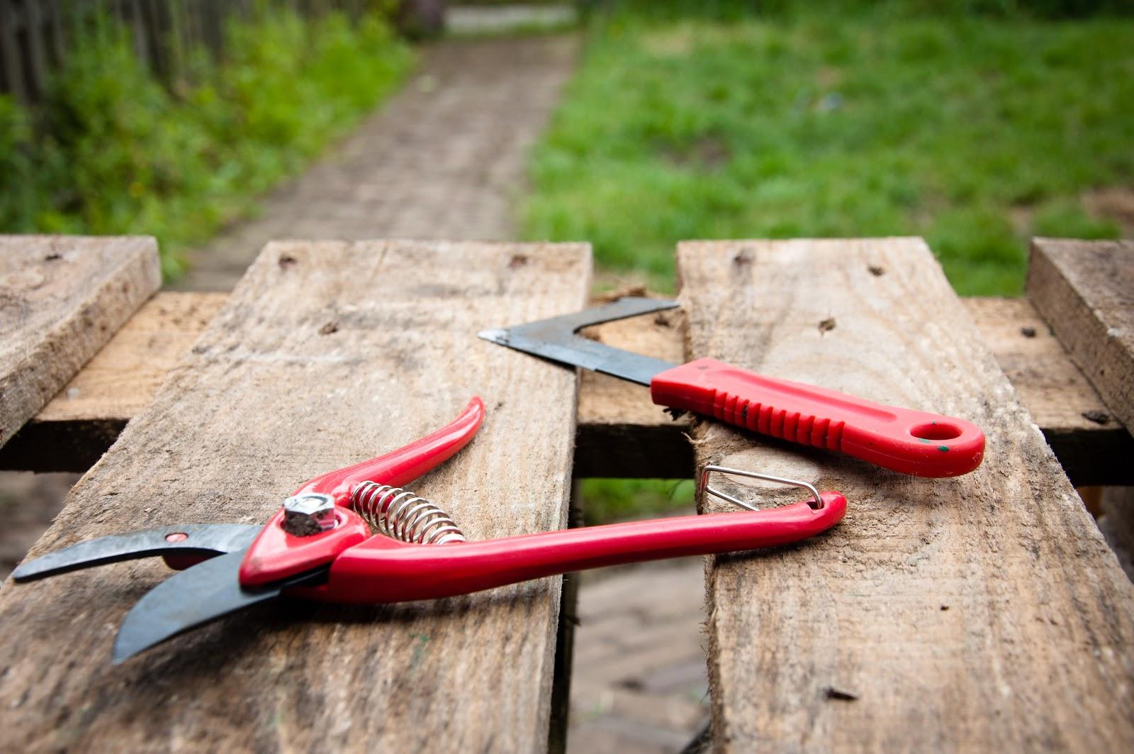 Bricorex 10 herramientas b sicas para el cuidado de tu for Herramientas para el jardin