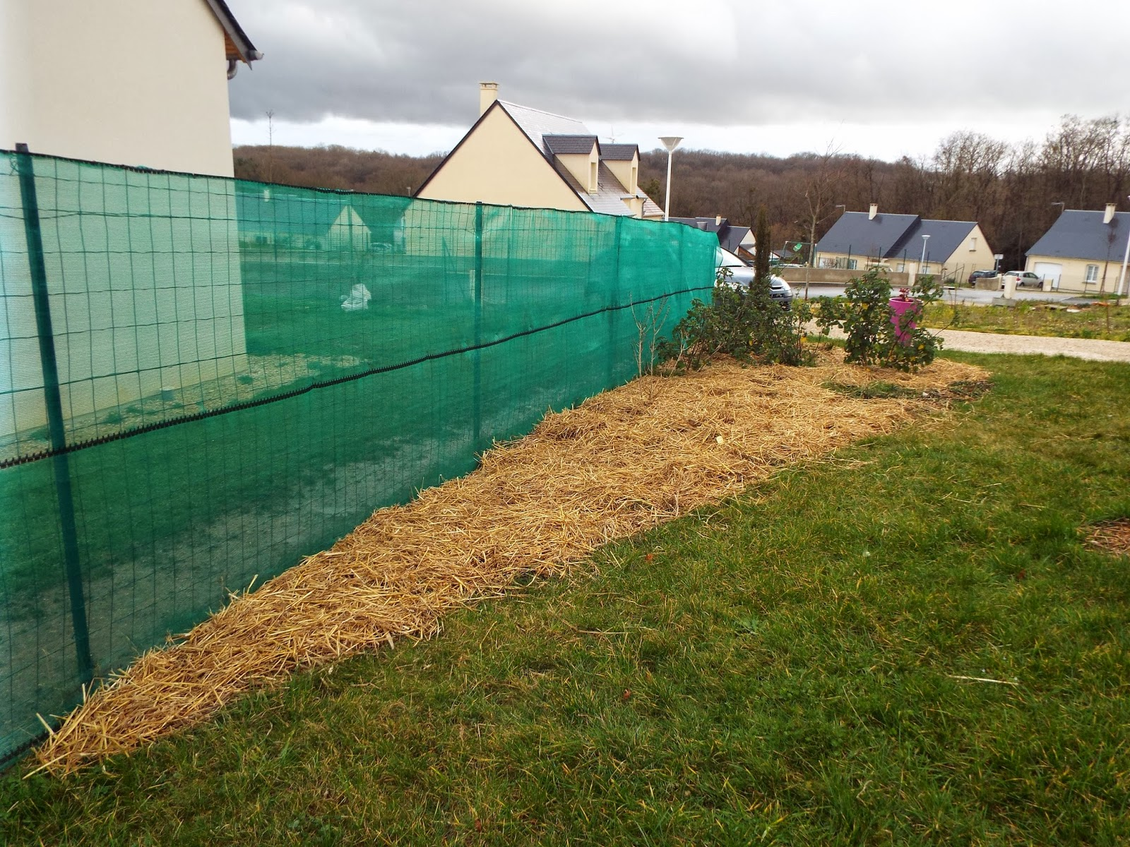 Jardin aux quatre saisons buis taille et nouvelle treille for Nettoyage jardin 78
