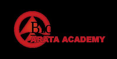 Comunidade de blogueiros Arata Academy