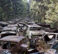 Ditemukan Kuburan Massal 800 Mayat Anak di Irlandia