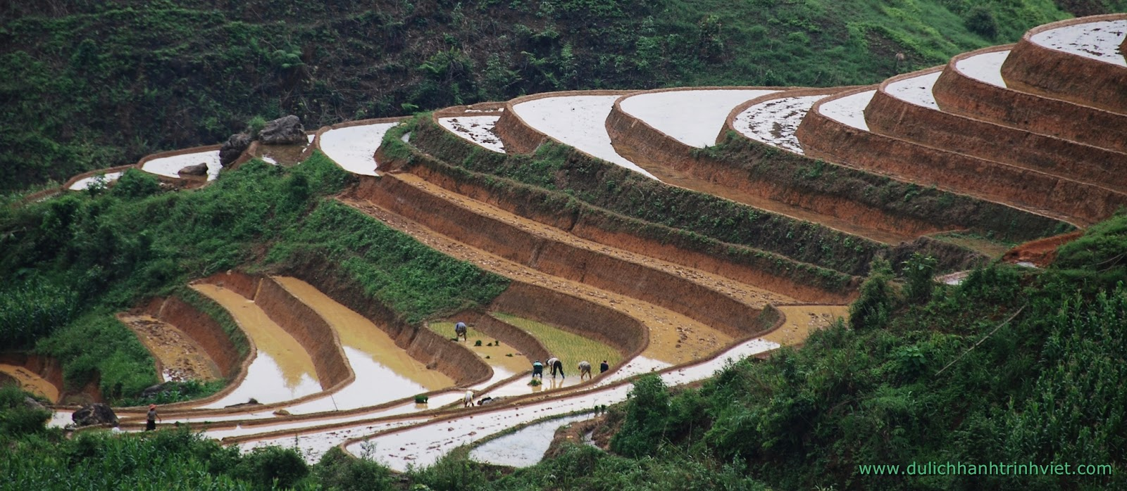 Du lịch Mù Cang Chải mùa nước đổ 2014