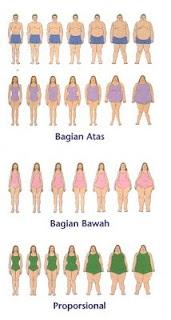 Bentuk Tubuh ideal wanita dan Pria