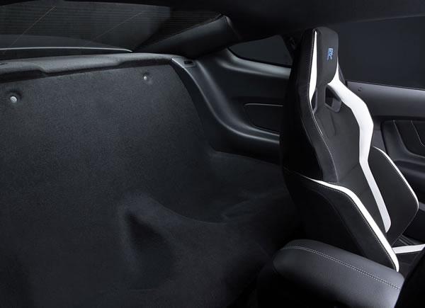 「Mustang Shelby GT350R」のリアシートがあった場所の画像
