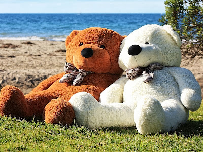 Lovely Teddy Couples Pictures Free Download