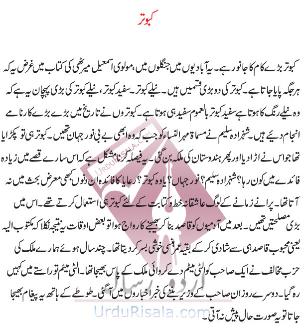 zardari funny essay in urdu