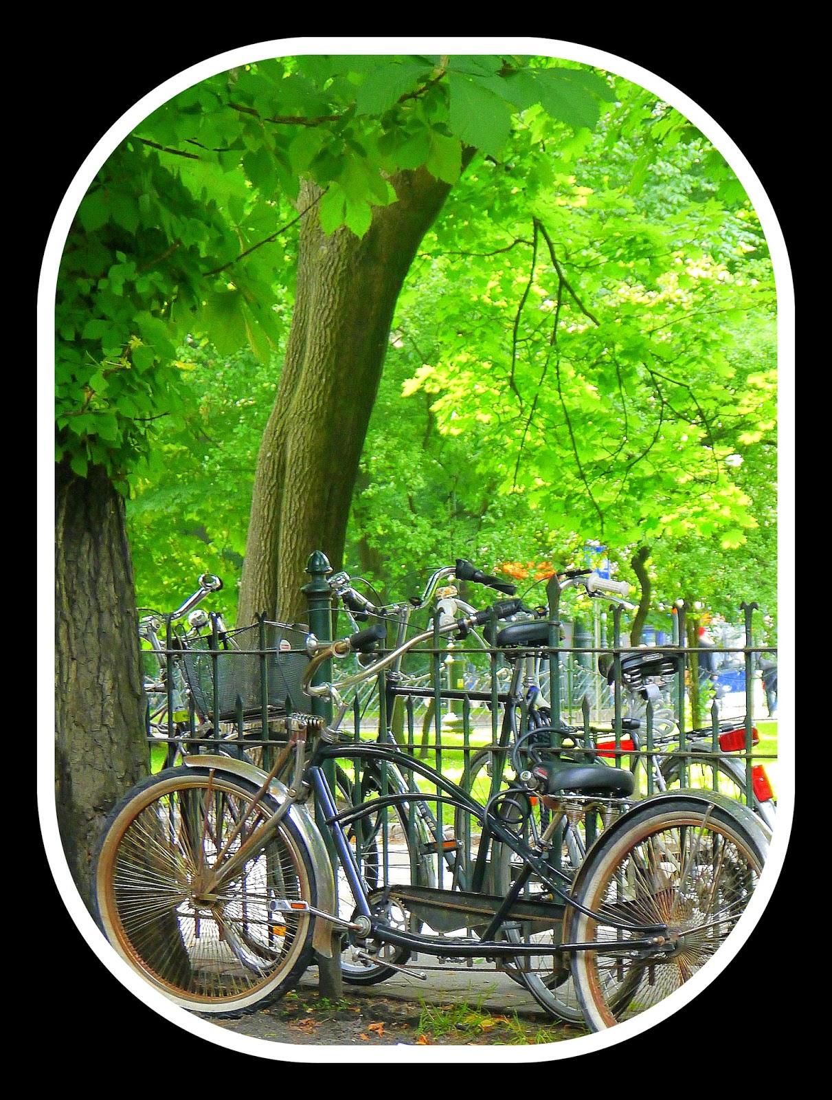 Cafe Bunkier, Drugie śniadanie, rower