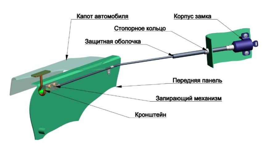 схема лечения уреаплазмы у