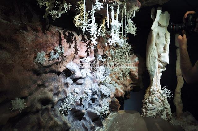 Centro Interpretación Cueva del Castañar