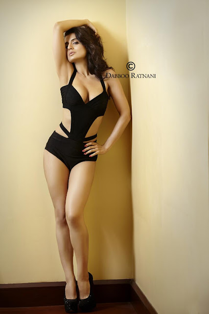 Amisha patel bikini hot 2013 shoot