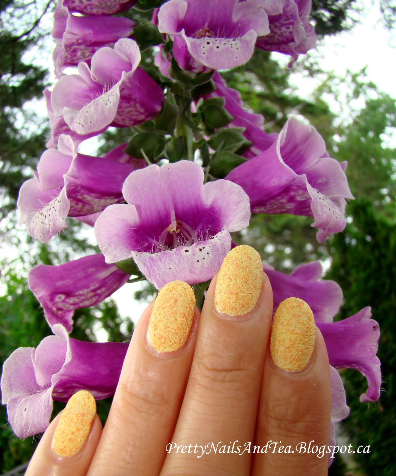 Flowers and Nails | PrettyNailsAndTea.blogspot.ca