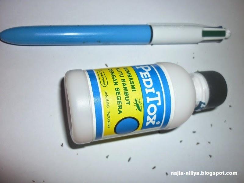 peditox untuk membasmi kutu rambut