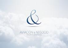 Aviación & Negocio