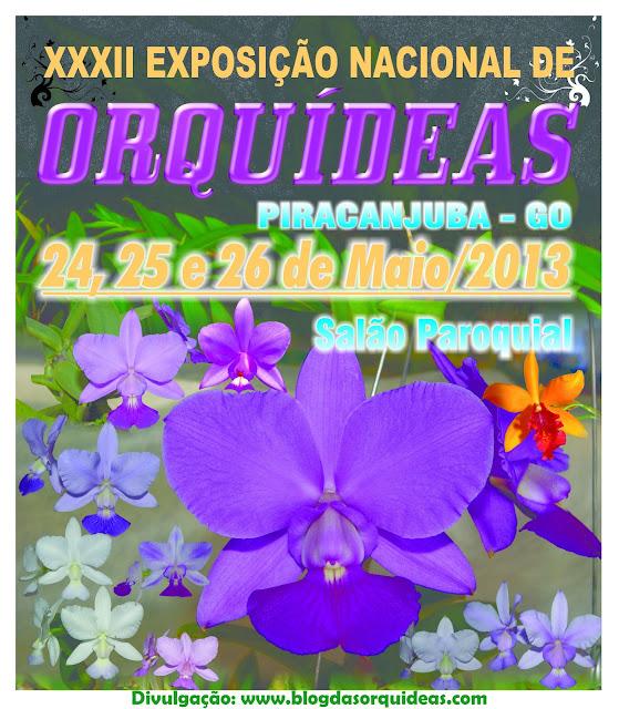 Exposição de Orquídeas de Piracanjuba - GO