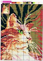 Схема вышивки домашнего котика