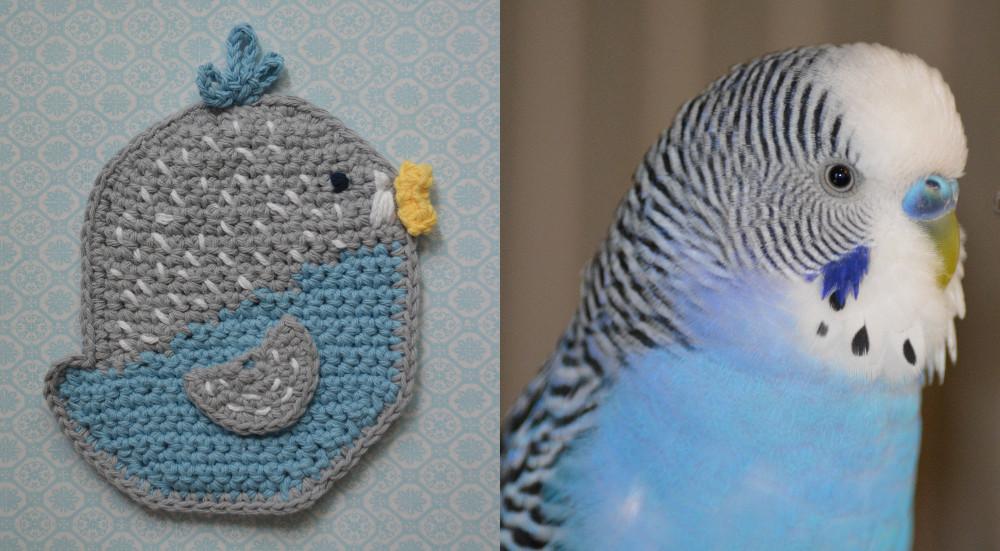 cozy birdhouse | parakeet potholder