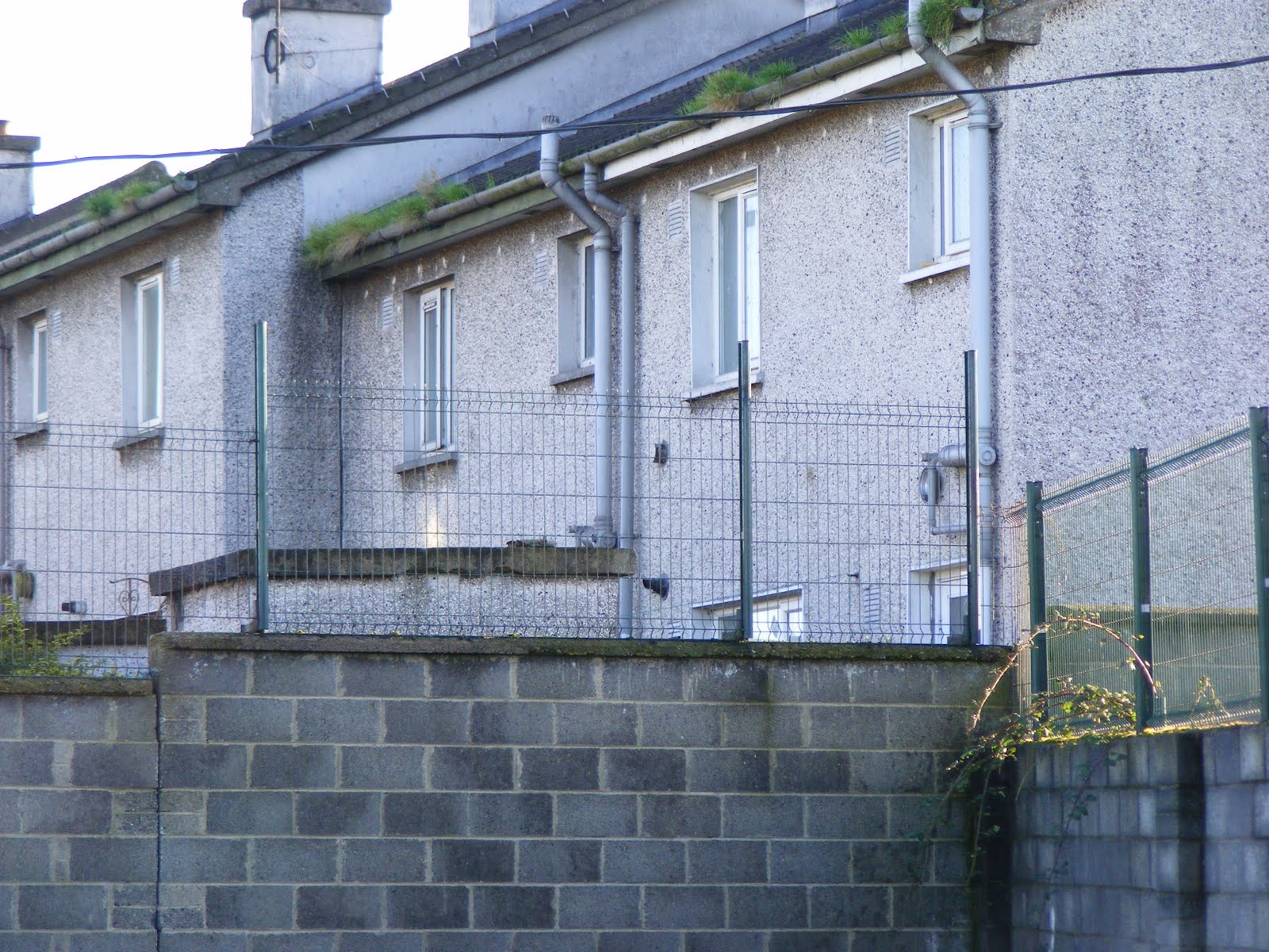 Townland - How to keep intruders out of your garden ...