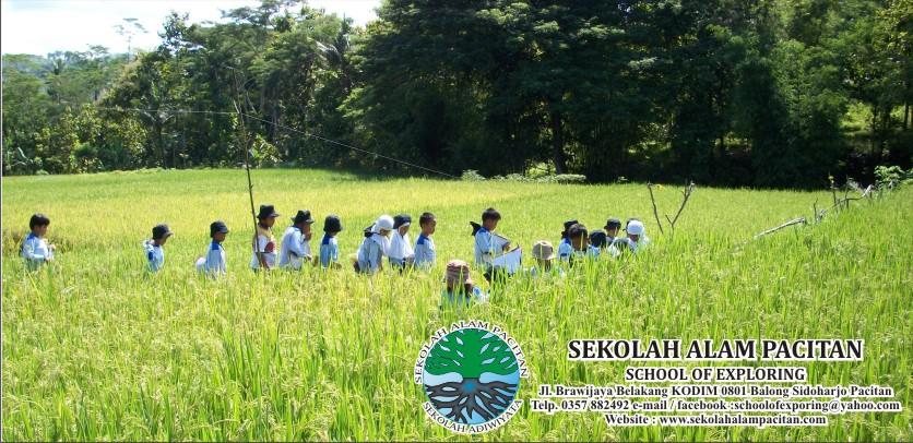 Sekolah Alam Pacitan (Sekolah Adiwiyata)