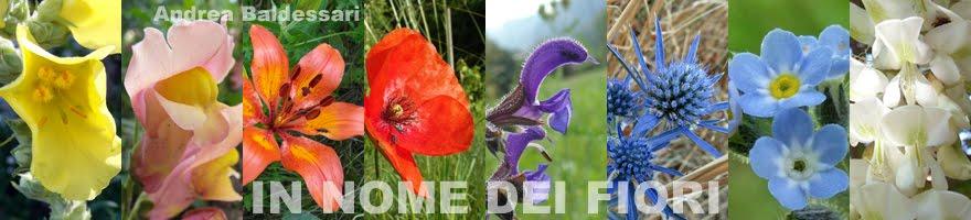 In nome dei fiori