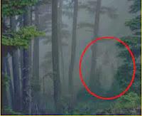 Benarkah Bapak Moyang Jin Berbeda dengan Syaitan?
