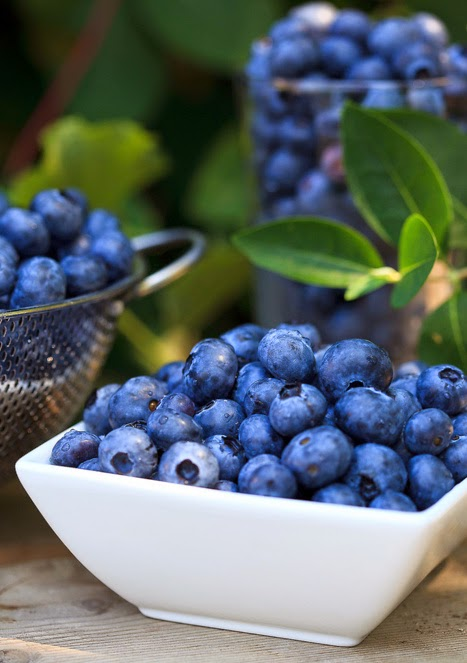 Descubre 5 Super Alimentos Prevenir Envejecimiento