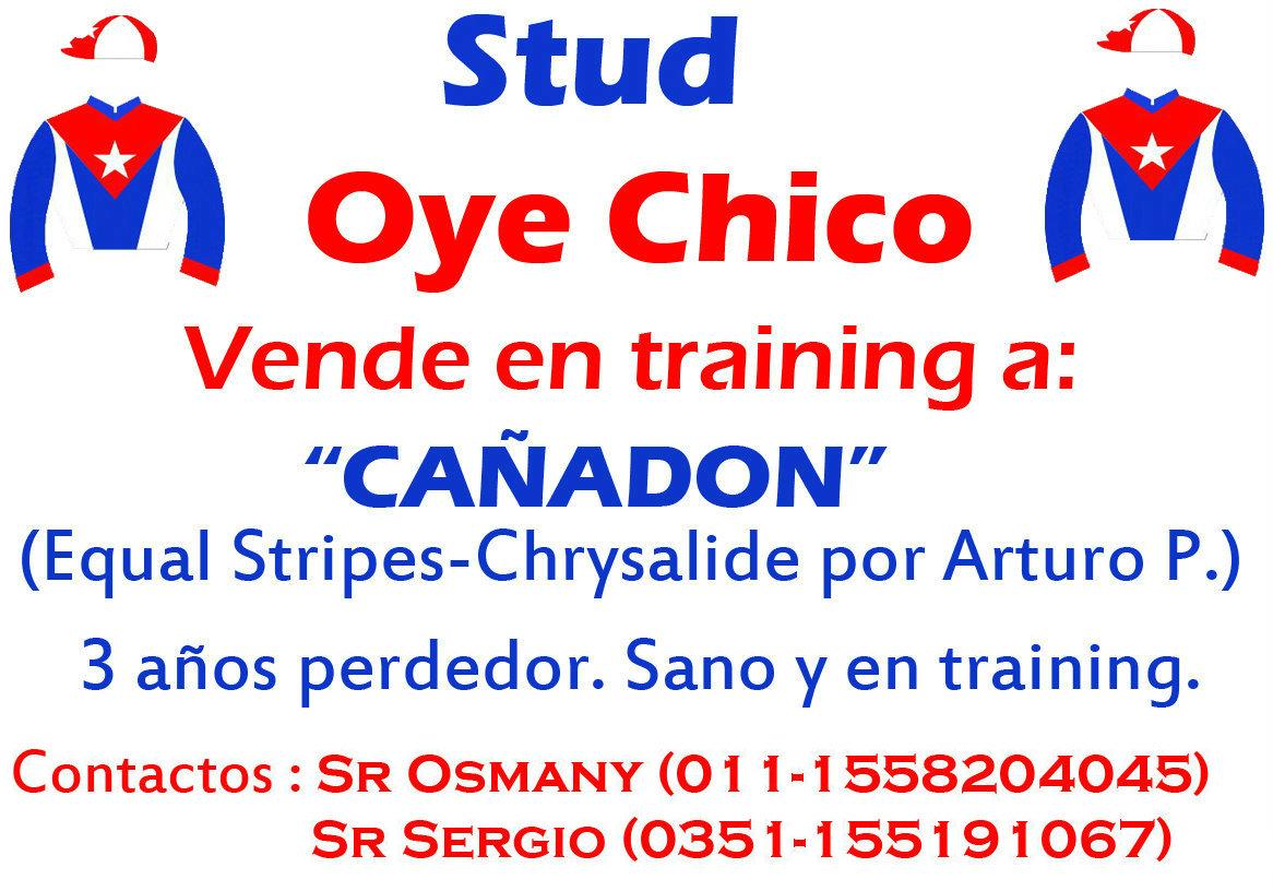 OYE CHICO VENTA CAÑADON