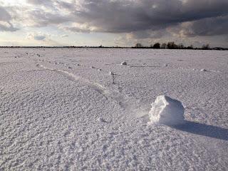 Snow Roller, Fenomena Meteorologi yang Langka