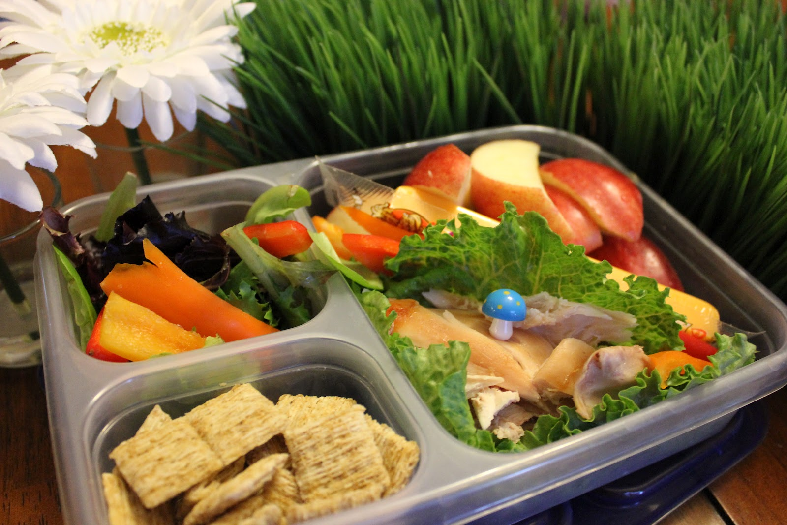 Life 39 s abundant adventures healthy school lunches for Lunch food
