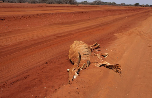 Horn_of_Africa