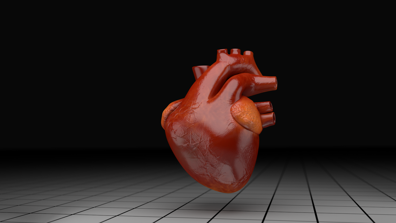 Animated human heart - photo#4