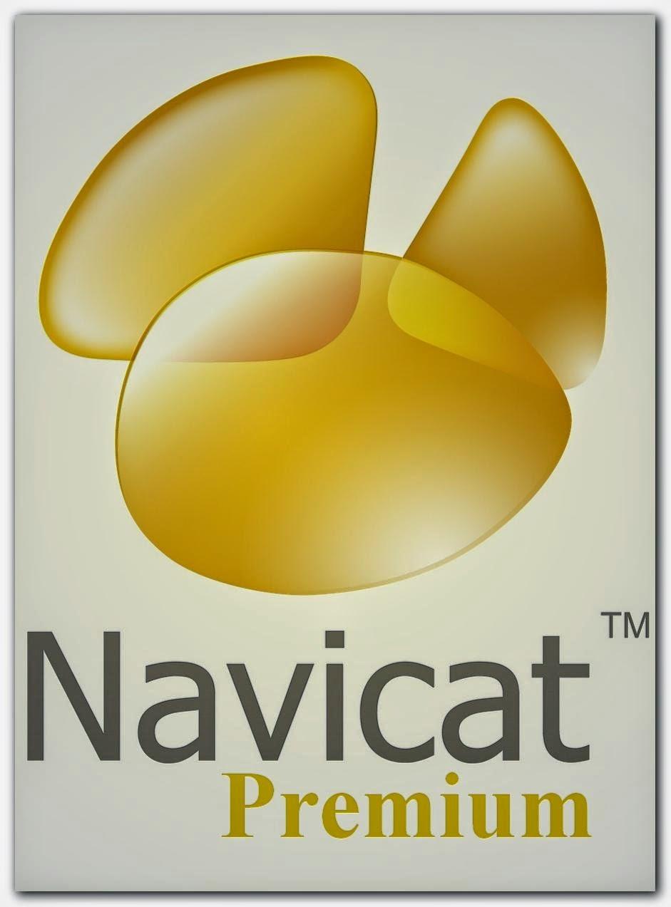 Nacivat Premium Full Sınırsız Metin2 Porgramı İndir 2015