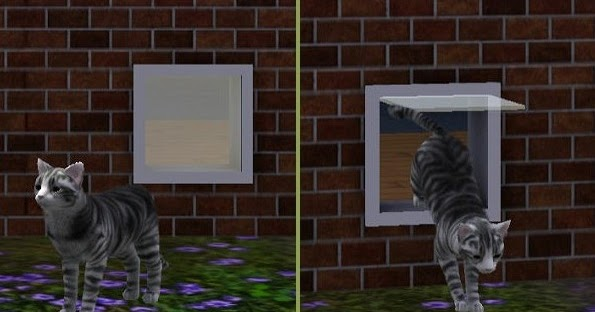 Doggy Door Sims  Cats And Dogs