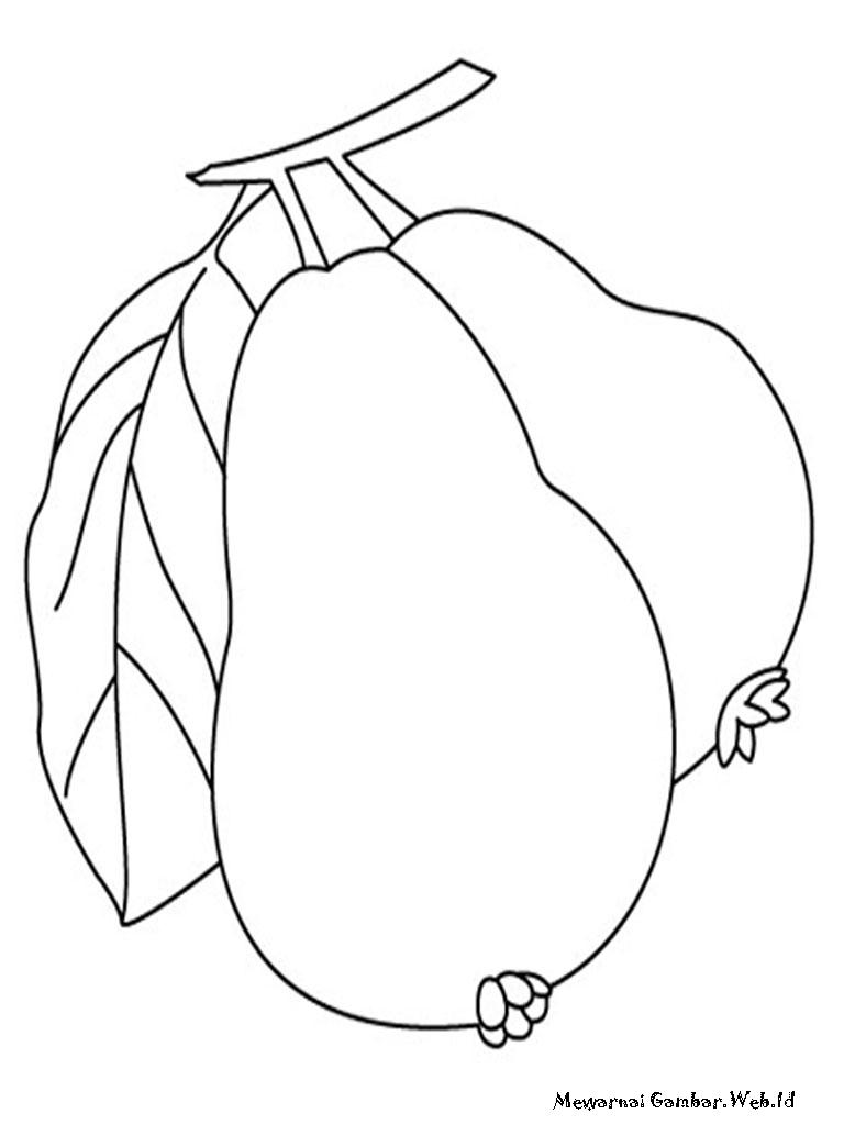 kumpulan gambar mewarnai buah jambu yang telah dikumpulkan oleh gambar