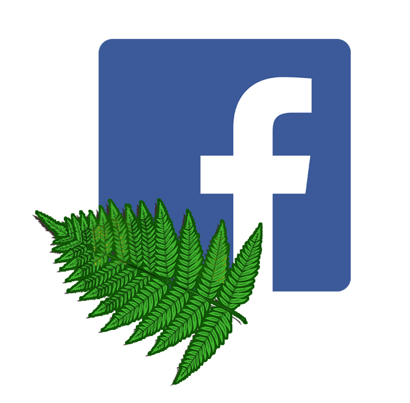 """Metti """"Mi piace"""" sulla pagina Facebook del Circolo"""