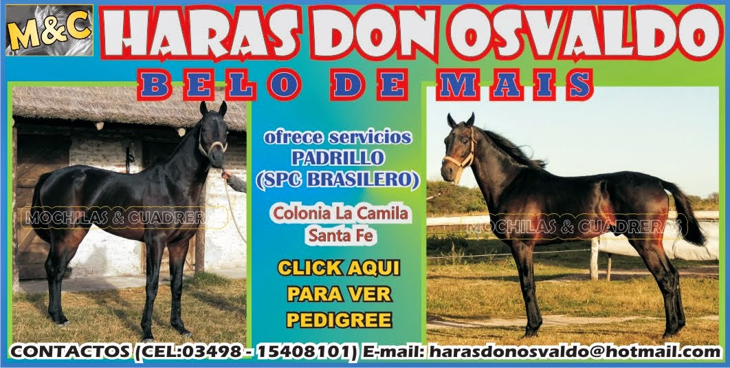 HARAS DON OSVALDO - 01/06/14