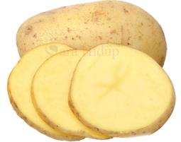 gambar manfaat kentang untuk kesehatan