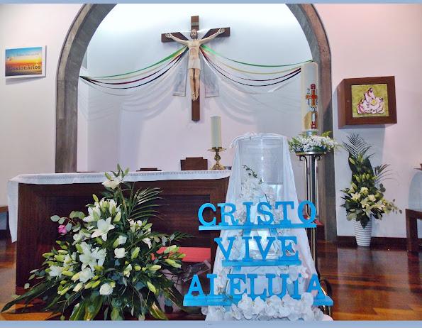 CRISTO VIVE ALELUIA