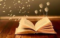 Amores Entre Livros